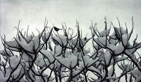 snowbird_07