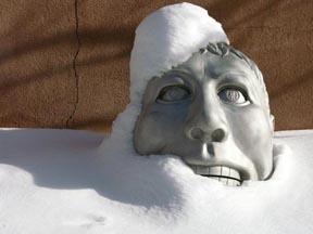 erica-head-snow-4w