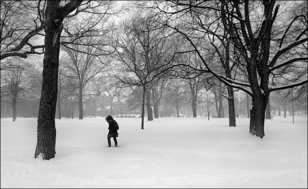 queens-park_snow_bw_dark-figure_011